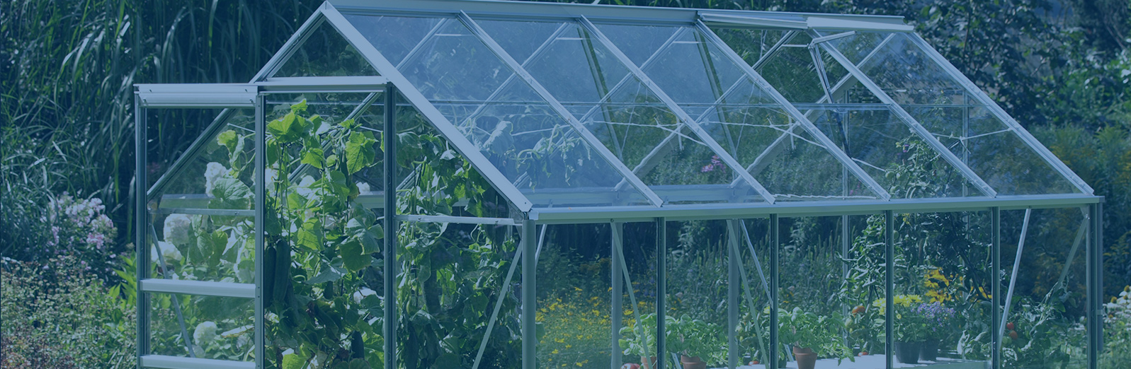 greenhouse-banner